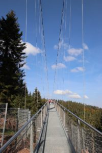 Bad Wildbad - Wild Line Hängebrücke