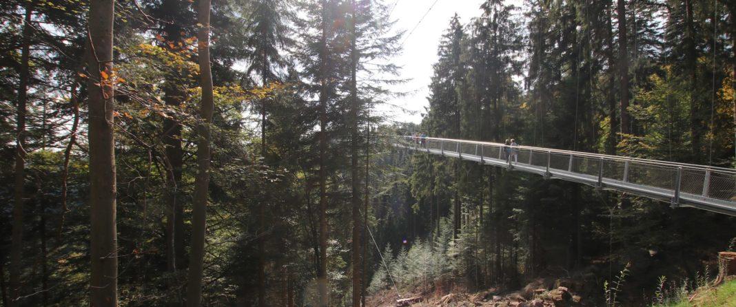 Wild Line Hängebrücke Bad Wildbad