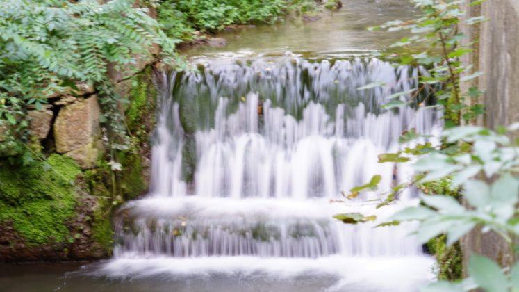 Kleiner Wanderrundweg durch Weinberge in Weingarten am Bach entlang